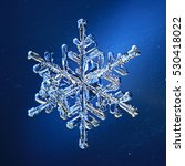 Natural Snowflake Photo...