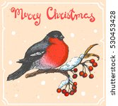 vector color illustration of... | Shutterstock .eps vector #530453428