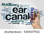 Small photo of Ear canal word cloud concept