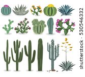 cactus and succulent vector set.... | Shutterstock .eps vector #530546332