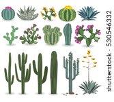cactus and succulent vector set.... | Shutterstock .eps vector #530546332
