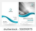 brochure layout design template ... | Shutterstock .eps vector #530590975