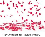 Stock photo rose petals fall to the floor isolated background 530649592