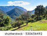 Mediterranean Landscape  View ...