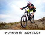 Professional Cyclist Riding Th...