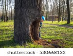 little boy is playing hide and... | Shutterstock . vector #530668132