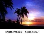 Palm Trees At Sunset. Varadero