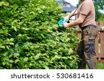 cutting a hedge with electrical ... | Shutterstock . vector #530681416