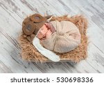 Funny Sleeping Wrapped Newborn...
