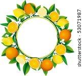 citrus wreath | Shutterstock .eps vector #53071987