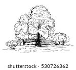 hand drawn trees in the park.... | Shutterstock .eps vector #530726362