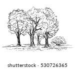 hand drawn trees in the park.... | Shutterstock .eps vector #530726365