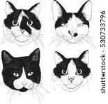 vector cat set. four... | Shutterstock .eps vector #530733796