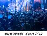 silhouettes of concert crowd in ... | Shutterstock . vector #530758462