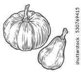 pumpkins. natural organic hand... | Shutterstock . vector #530769415