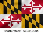 flag of the us state of... | Shutterstock . vector #530810005