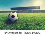 soccer on green grass in soccer ... | Shutterstock . vector #530819302