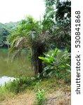 beautiful lake in africa....   Shutterstock . vector #530841868