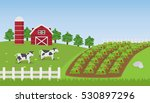 landscape farm with strawberry... | Shutterstock .eps vector #530897296