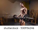 muscular bodybuilder guy doing... | Shutterstock . vector #530956246
