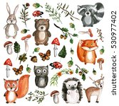 cute woodland animals... | Shutterstock . vector #530977402