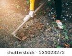 volunteer are planting a tree... | Shutterstock . vector #531023272
