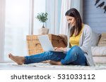 positive woman using the laptop ... | Shutterstock . vector #531033112