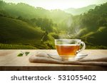 warm cup of tea and leaf on... | Shutterstock . vector #531055402