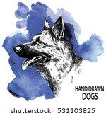 german shepherd. dog head... | Shutterstock .eps vector #531103825