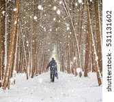 man walking in winter forest... | Shutterstock . vector #531131602