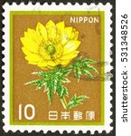 Small photo of JAPAN - CIRCA 1980 a stamp printed in the Japan shows Amur Adonis, Flowering Plant, circa 1980