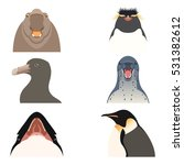 Set Of Flat Antarctic Animal...
