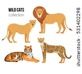 Stock vector cartoon animals lion lioness cheetah tiger the drawn set of wild cats collection of stylized 531402298