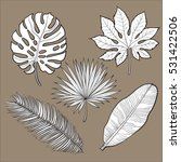 set of tropical palm leaves ... | Shutterstock .eps vector #531422506