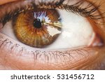 Small photo of Detail of human eye. Brown colored eye. Close up to retina, cornea, pupil, eyelashes, sclera. Zoom of eye ball. Auto portrait in eye. Macro photography. Vision, perception, light, sense organ.
