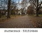 fall in the park trees | Shutterstock . vector #531514666