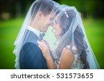 beautiful young newlyweds going ...   Shutterstock . vector #531573655