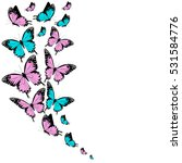 Color Butterflies Isolated On ...