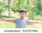 little boy in the nature park. | Shutterstock . vector #531597406