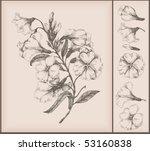 vintage flower drawing | Shutterstock .eps vector #53160838