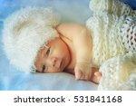 little newborn baby | Shutterstock . vector #531841168