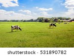 Flat Dutch Landscape With ...