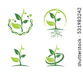 green dna ecology leaf plant... | Shutterstock .eps vector #531983242