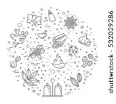 outline icon set   spices ... | Shutterstock .eps vector #532029286