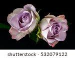 close up of bouquet pastel... | Shutterstock . vector #532079122