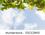a curtain of green leaves... | Shutterstock . vector #53212843