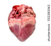 Small photo of raw pig heart close-up isolated on white background