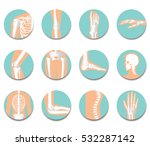 orthopedic and spine icon set... | Shutterstock .eps vector #532287142