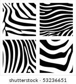 zebra   Shutterstock .eps vector #53236651