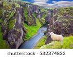 white sheep grazing on the... | Shutterstock . vector #532374832